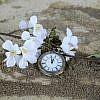 pocket-watch-1637392_640