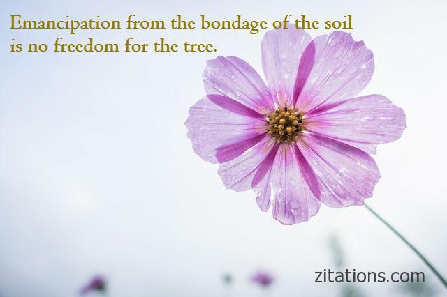 Rabindranath Tagore Quotes on Freedom 7