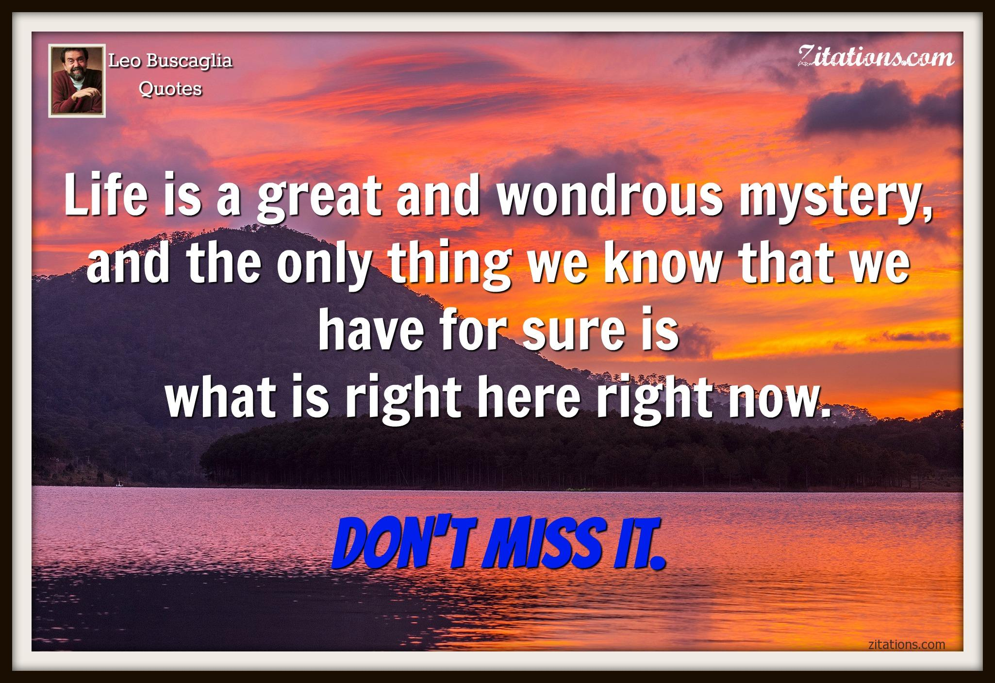 Leo Buscaglia Quotes - quotes live in the moment